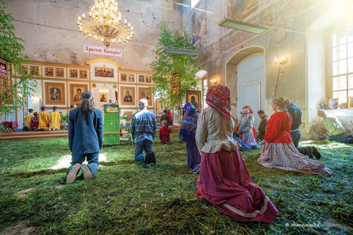 Улица троицкая г кургана фото жить
