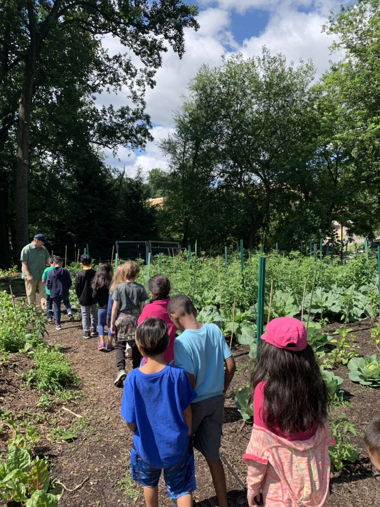 2nd graders ending their expedition with a service project of planting our pollinating plants that we grew from seed at an AFAC garden at St. Andrews Church in Arlington! We grew marigolds, wild flowers, Belles of Ireland, and Borage! <a target='_blank' href='http://twitter.com/CampbellAPS'>@CampbellAPS</a> <a target='_blank' href='http://twitter.com/mariann_sim'>@mariann_sim</a> <a target='_blank' href='http://twitter.com/ms_croce'>@ms_croce</a> <a target='_blank' href='https://t.co/GSSRSgyCpz'>https://t.co/GSSRSgyCpz</a>