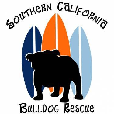 For the month of June, 10% of all proceeds in @TheOzzfest #eBay store will go directly to @SoCalBulldog Rescue! stores.ebay.com/ozzfest