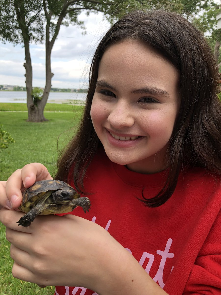 New Tortoise  what should I call him/her?  - - - #summertime #turtle #pet #animal #tortoise #africanspurredtortoise #FridayNightLights #FridayThoughts #SaturdayMorning #weekendvibes<br>http://pic.twitter.com/XojL2JKzDc