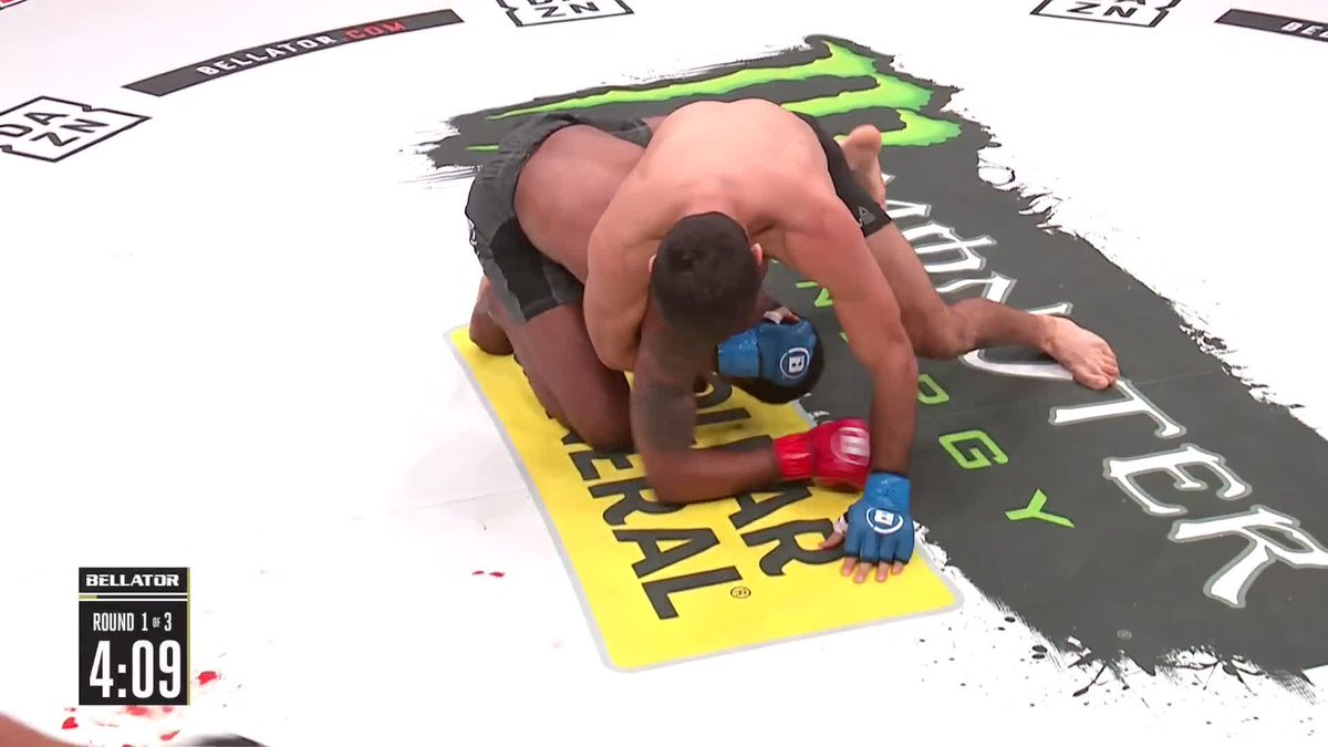 In MMA there are transitions and then there is this! Woah!