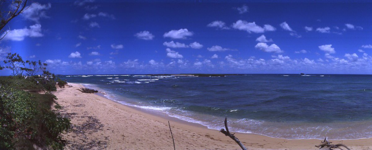 My First Attempt with new #ektachrome #horizonperfekt #35mm #believeinfilm #hawaii #panorama https://t.co/ILXRYgvGTd