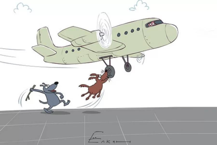 это смешной самолетик картинка следовательно, шикарные