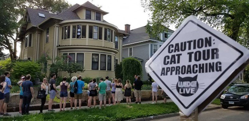 """Caturday felid trifecta: Adult tiger meets cubs, a cat tour of Minneapolis, and a """"bionic cat"""" gets four prostheticpaws https://whyevolutionistrue.wordpress.com/2019/06/15/caturday-felid-trifecta-adult-tiger-meets-cubs-a-cat-tour-of-minneapolis-and-a-bionic-cat-gets-four-prosthetic-paws/…"""