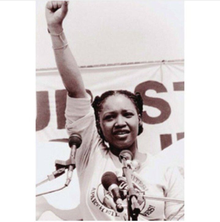 Sis Zindzi Mandela appreciation tweet  I stan an apologetic, fearless mbokodo #ZindziMandela #OurLand<br>http://pic.twitter.com/TXGGvqoNYb