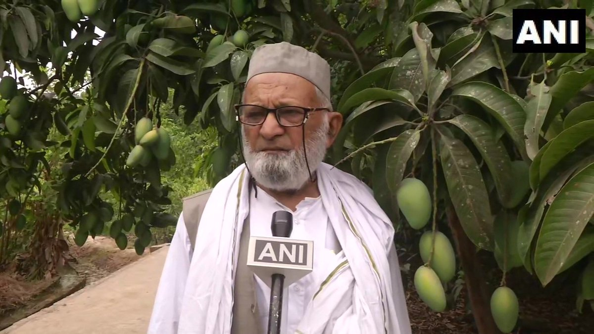 Haji Kalimullah Khan: These mangoes match with personality of Amit Shah. I hope they also taste good so that they match him well. I'd also named varieties of mangoes after Aishwarya, Sachin, Akhilesh, Kalam sa'ab & Bachchan sa'ab. People will always remember good people like this
