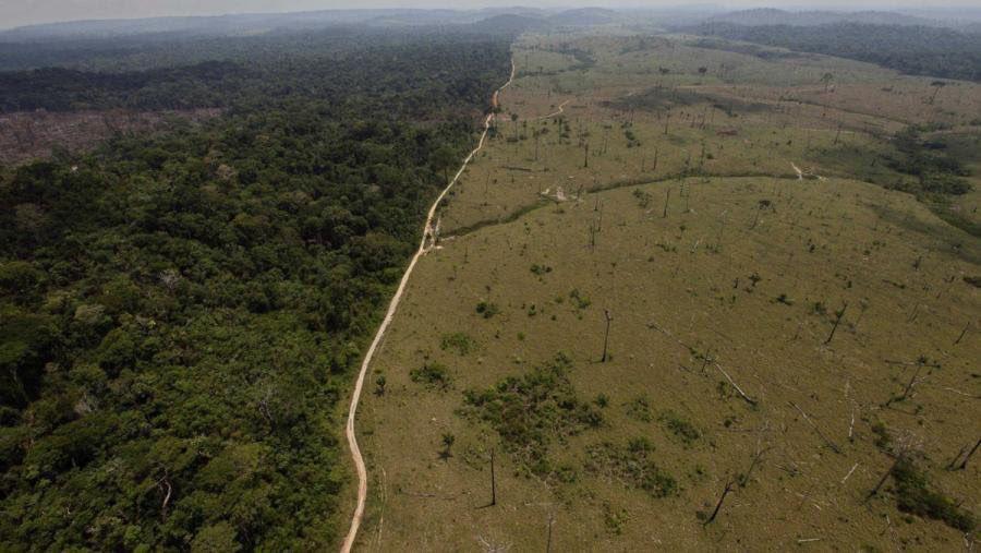 Changement d'albédo suite à déforestation
