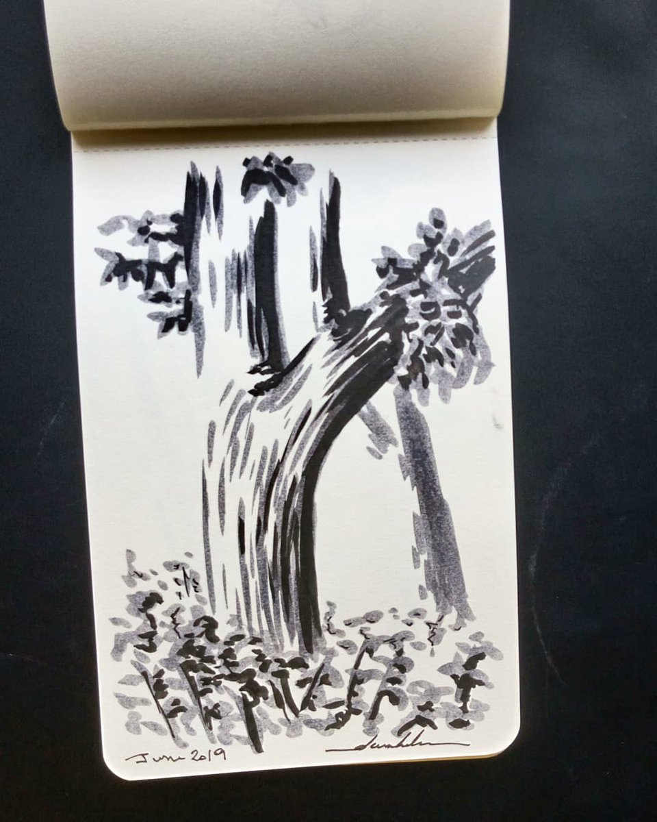 Tree #dailyart #dailyillustration #tree #nature #blackandwhitedrawing https://t.co/CyZ8fSOHjZ