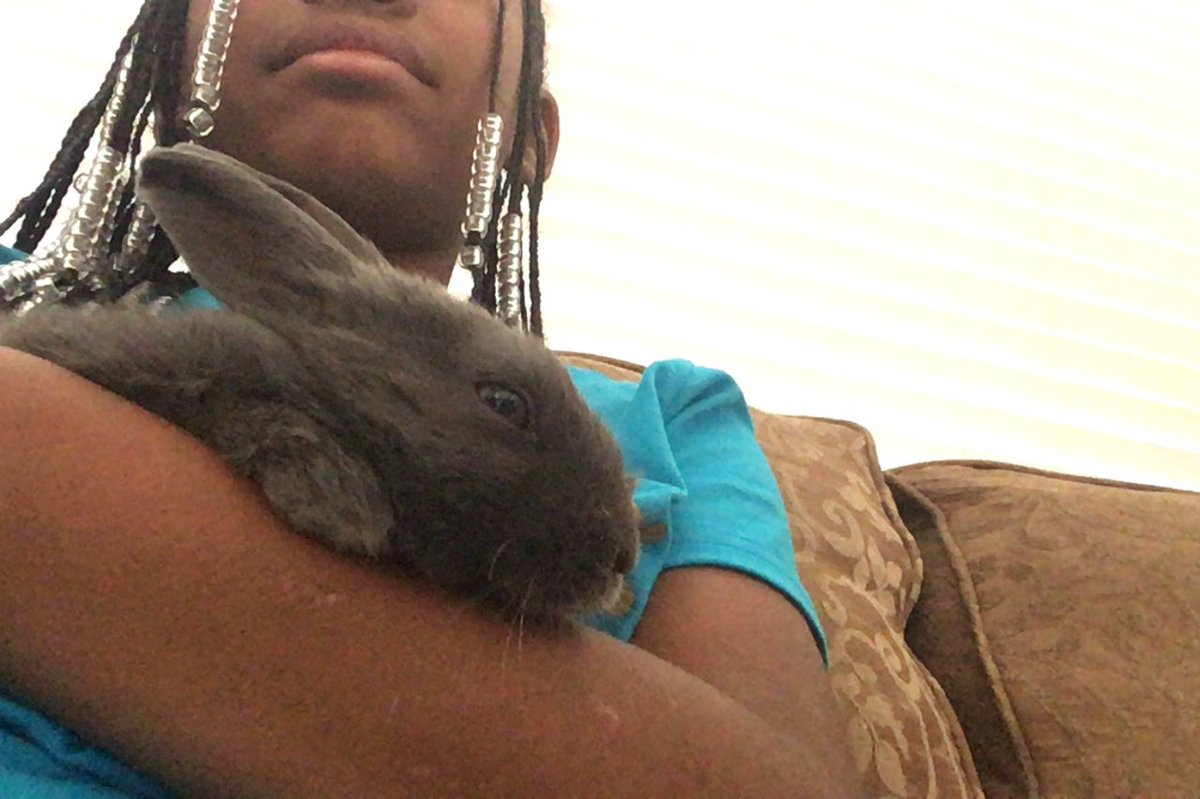My niece ft me so I could see her new bunny <br>http://pic.twitter.com/8TEtnzJday
