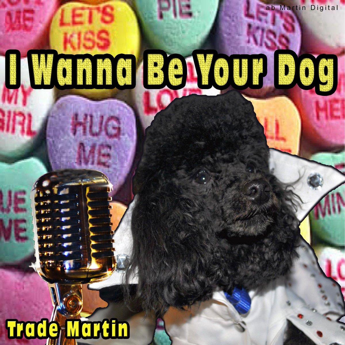 @TutMusicGroup .I Wanna Be Your Dog https://www.youtube.com/watch?v=1u9iszZKi1s… #trademartin #abMartinDigital #iTunes #Amazon #Spotify #AppleMusic