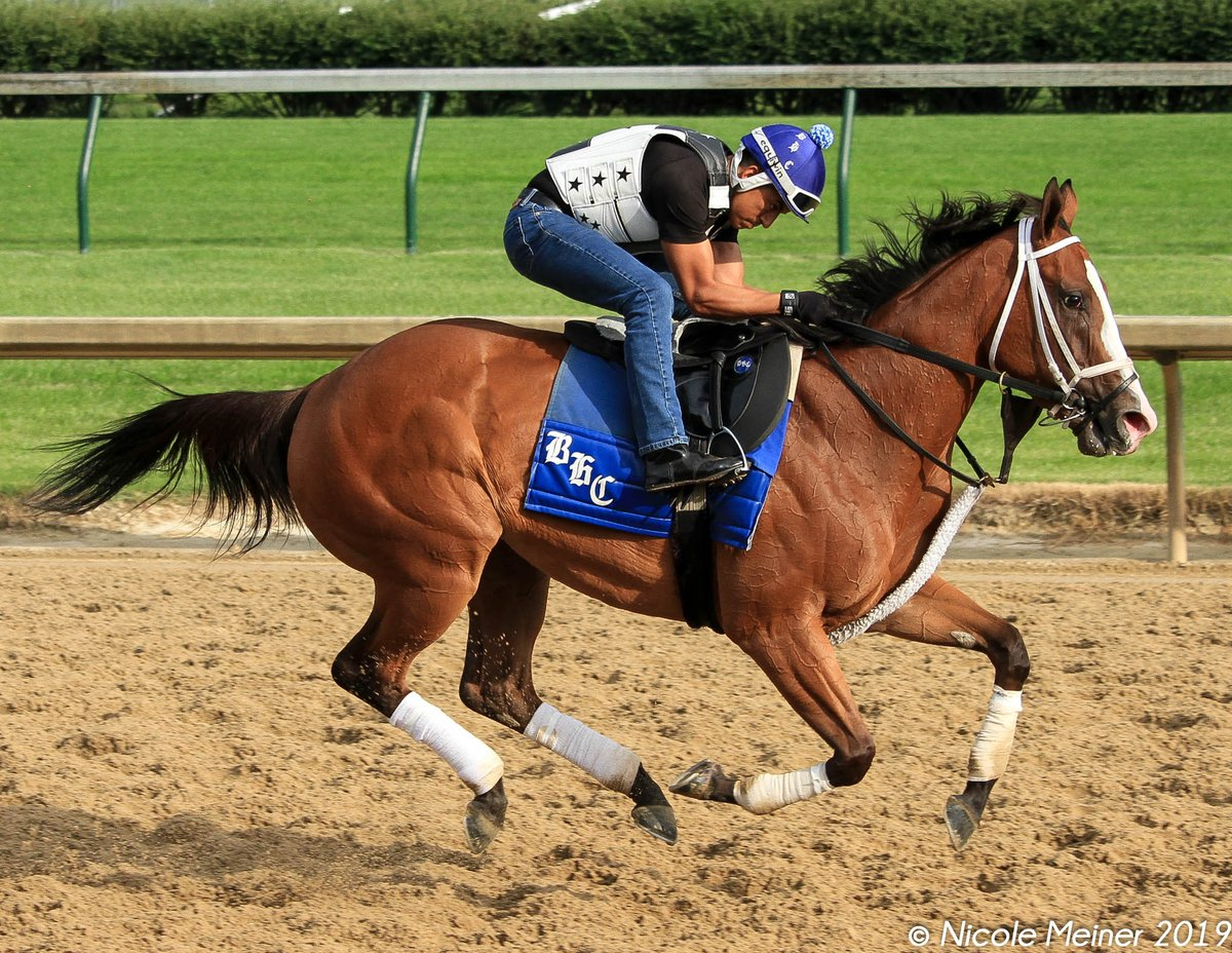 Covfefe out this morning at Churchill. <br>http://pic.twitter.com/Ovw2qOXSGV