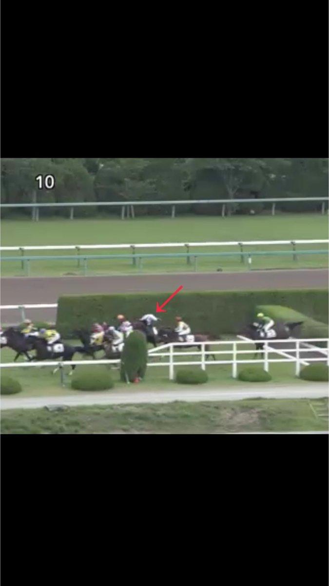 1枚目 阪神4R障害戦で9番の騎手が1つ目の障害で落馬 2枚目 9番の馬何処だろう〜いたいた! 3枚目 あれ?何処行くの!? 4枚目 最終コーナーで 戻ってきたー! の流れで笑い止まらなかった
