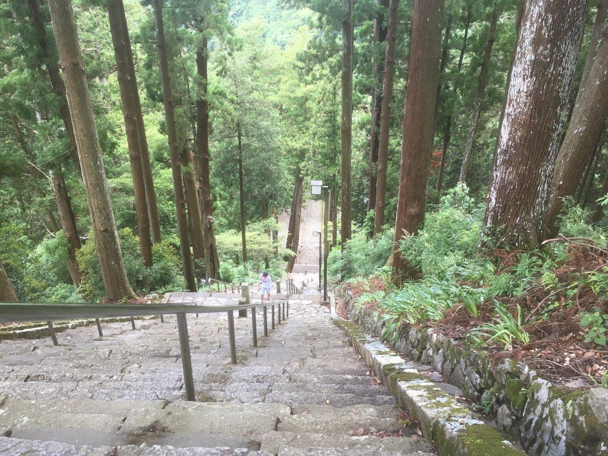 身延山久遠寺。お寺から一番近いせいしん駐車場に車を停めて、そこから斜行エレベーターで上までいけるので写真の階段を登らなくてもいいという。なんて便利なんでしょう...