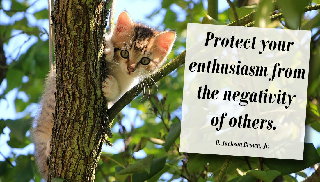 """""""Protect your enthusiasm from the negativity of others."""" #successquotes #motivationalquote #mlmtips<br>http://pic.twitter.com/0YdsqIxdWd"""