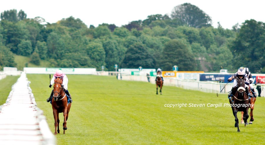 3rd win (in-a-row) for 3yo f ARCTIC FOX @CarolBartley4 in 12f Lady @amajox Queen Mothers's Cup @yorkracecourse yesterday for @coolmorestud Mastercraftsman @RichardFahey