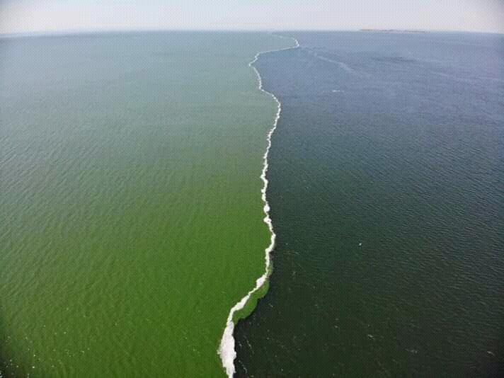 Большой адлерский океанариум фото встал скале