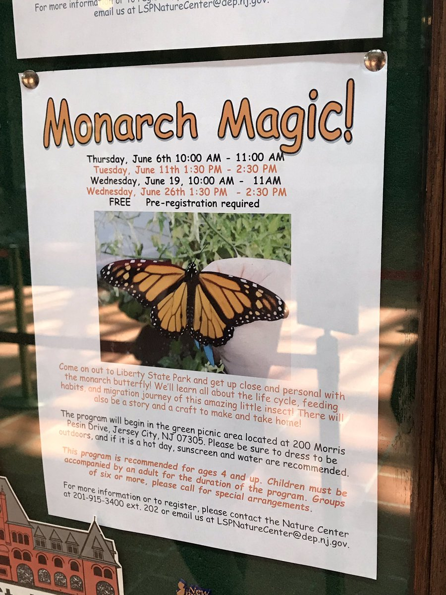Excited to find some #monarchbutterfly promotions and #milkweed around New York City! 🐛🐛🐛🐛🐛🐛🐛🐛🐛🐛 @newyorkcity