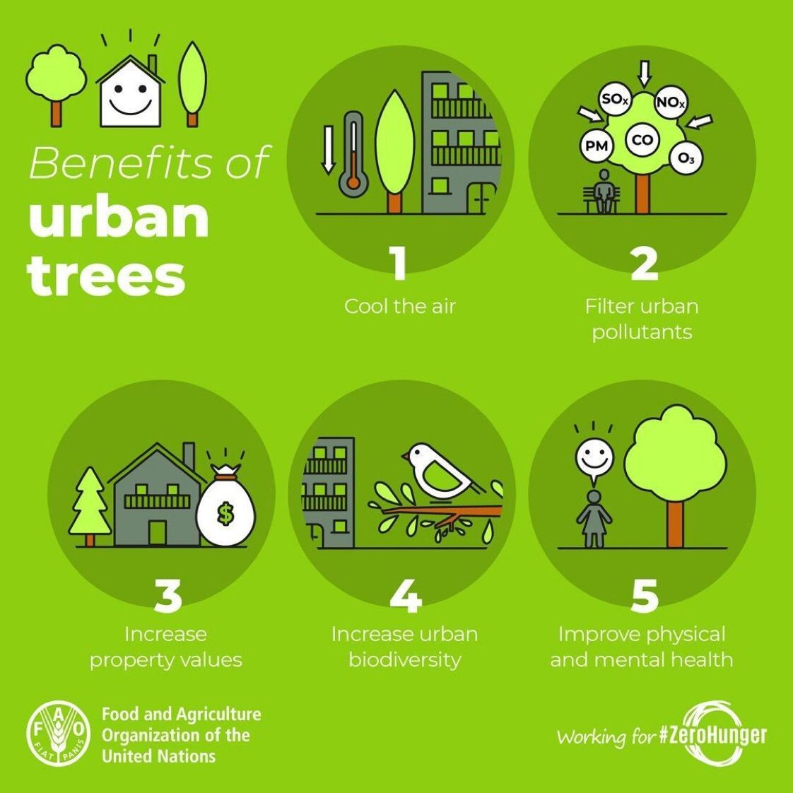 RT @FAO: #Trees and urban forests can make our #cities greener, healthier and happier places to live. 🌳🏙 🌲 🌇🌳 https://t.co/K0X6vr1tvr