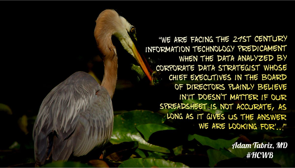 """We are facing the 21st century information technology predicament when the data analyzed by corporate data strategist whose Chief executives in the board of directors plainly believe in  'it doesn't matter if our spreadsheet is not accurate, as long as it gives us the answer we are looking for"""""""