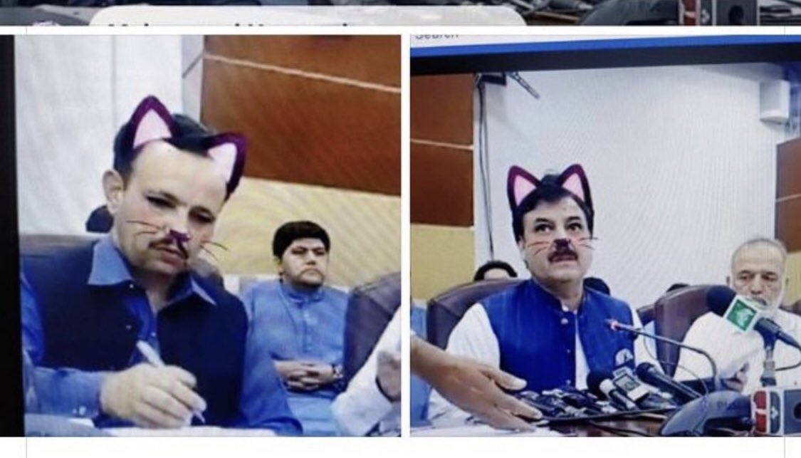 Pakistani Ministers Are Turning Into Cats