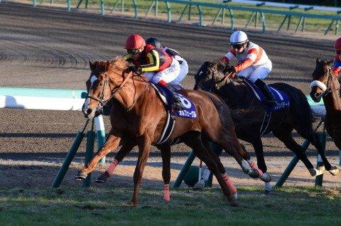 【競馬】有馬に続き宝塚も回避するアーモンドアイどう思う?→→https://t.co/5MGEIXsCX9