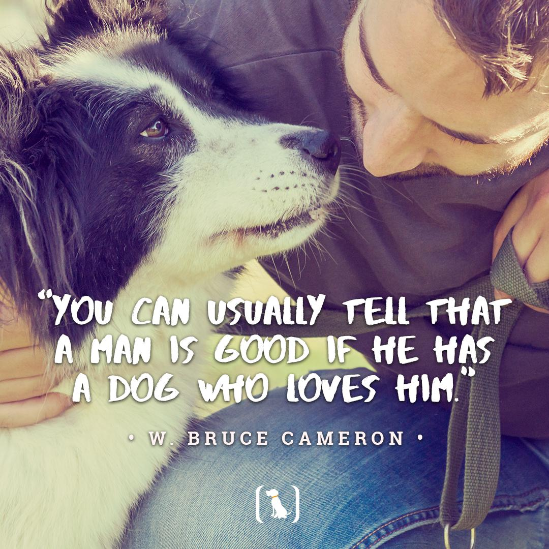 """You can usually tell that a man is good if he has a dog who loves him."" – W. Bruce Cameron  Double tap if you agree!   #dogs #dogsoftwitter #bigbarker #dogoftheday #doglover #lovedogs #precious #dog #dogoftwitter #american #bigdogs #madeinusa #bigbarkerusa #usa <br>http://pic.twitter.com/e3CPFxJz9a"