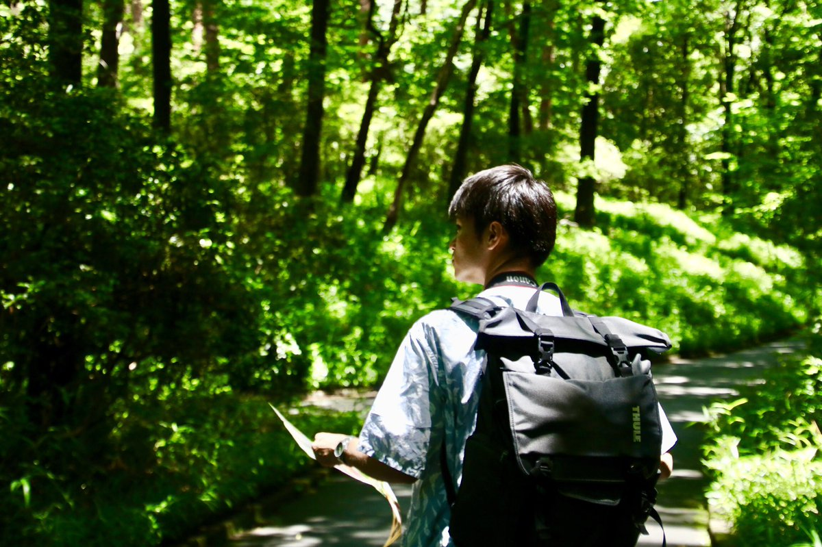 森林浴  #photography #photographer #キリトリセカイ #写真好きな人と繋がりたい #ファインダー越しの私の世界 https://t.co/pqKBETHtpa