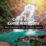 Image for the Tweet beginning: Rainfalls bring the best of