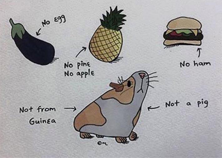 Прикольные картинки для изучения английского