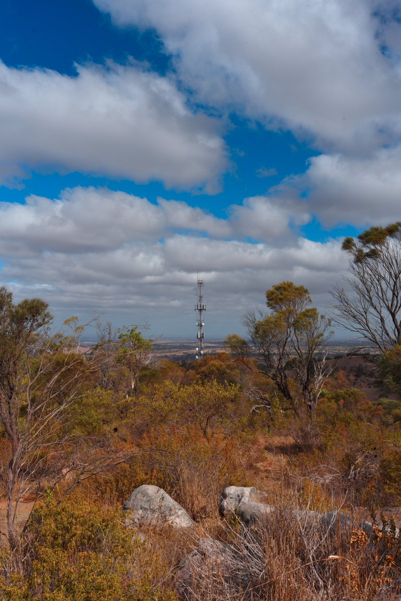 #scape366.com 169 - Looking south down the #spine of #mountbarker, past the #communicationstower to the #plains beyond. A beautiful #view from the #mountain #summit as #cumulus #clouds drift overhead #viewscape