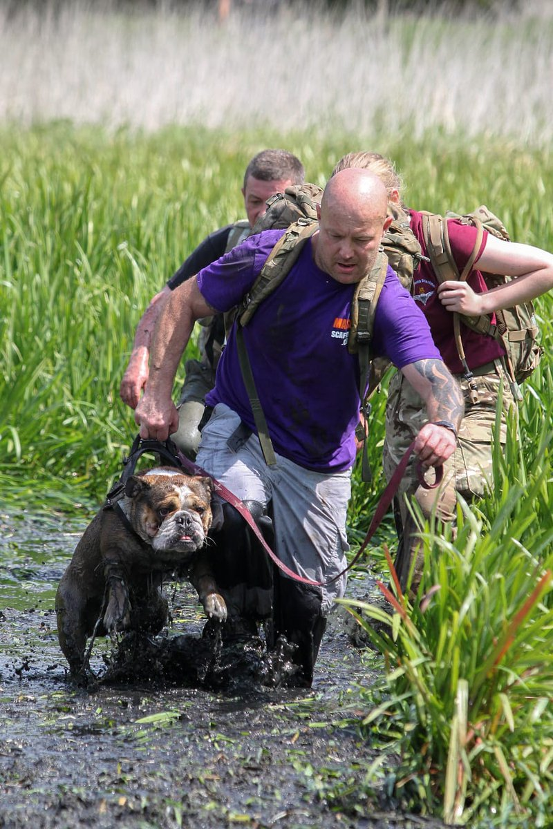 Not only did one of our #scaffolders, Ian Collins, complete @ThePARAS10 #military endurance race but he did more than half of it carrying his #bulldog, Reg! We are immensly proud of his hard work #fundraising for @supportourparas. See more: bit.ly/2WPc5OZ