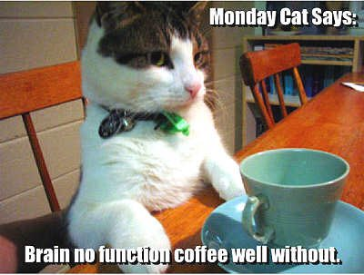 Anyone else have a human that has trouble functioning in the morning without coffee? Their inability to use words with more than one syllable or not walk into large pieces of furniture has me a bit concerned... #JustPutTheCoffeeMakerByTheBed #MondayMorning <br>http://pic.twitter.com/beuxxqpiPs