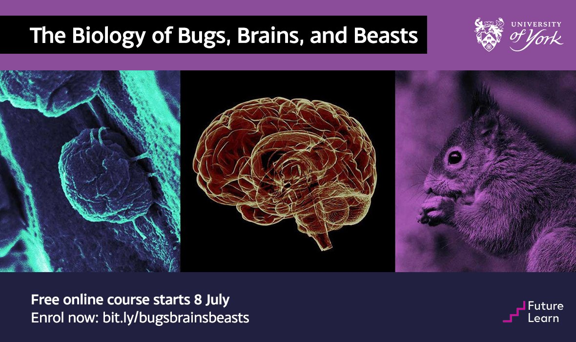 Improve your understanding of some key concepts in A level Biology and discover what's involved in higher level study with our new free online course: http://bit.ly/bugsbrainsbeasts… 🐛🧠