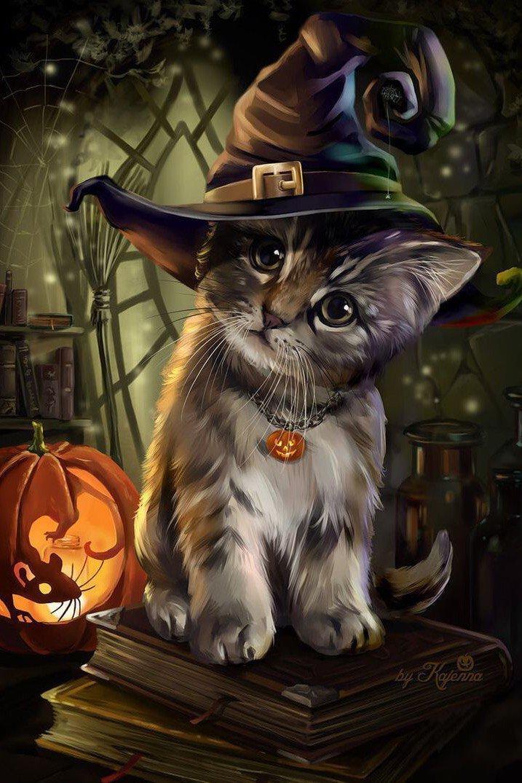 Картинка с анимацией кот в шляпе, сделать