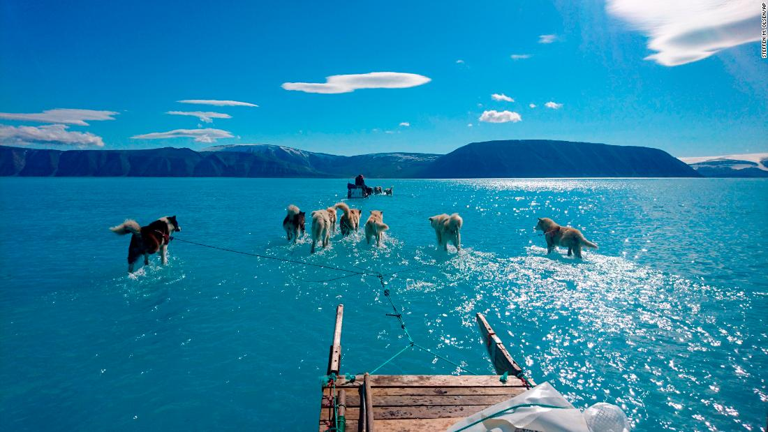 This photo of sled dogs walking through water shows the reality of Greenland's melting ice sheet https://cnn.it/2XStpix