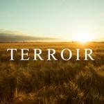 "Image for the Tweet beginning: #Terrior @westlandwhiskey: Terroir: ""a rural"