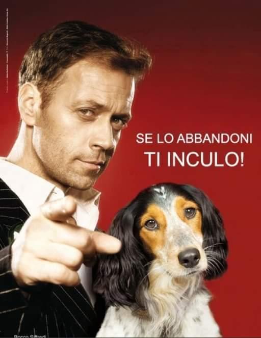 Para campaña contundente en contra del abandono de mascotas, la que protagonizó en Italia hace unos años la estrella del porno #RoccoSiffredi. En ella amenazaba con hacerle tras, tras, por detrás a todo aquel que abandonara a su animal de compañía.