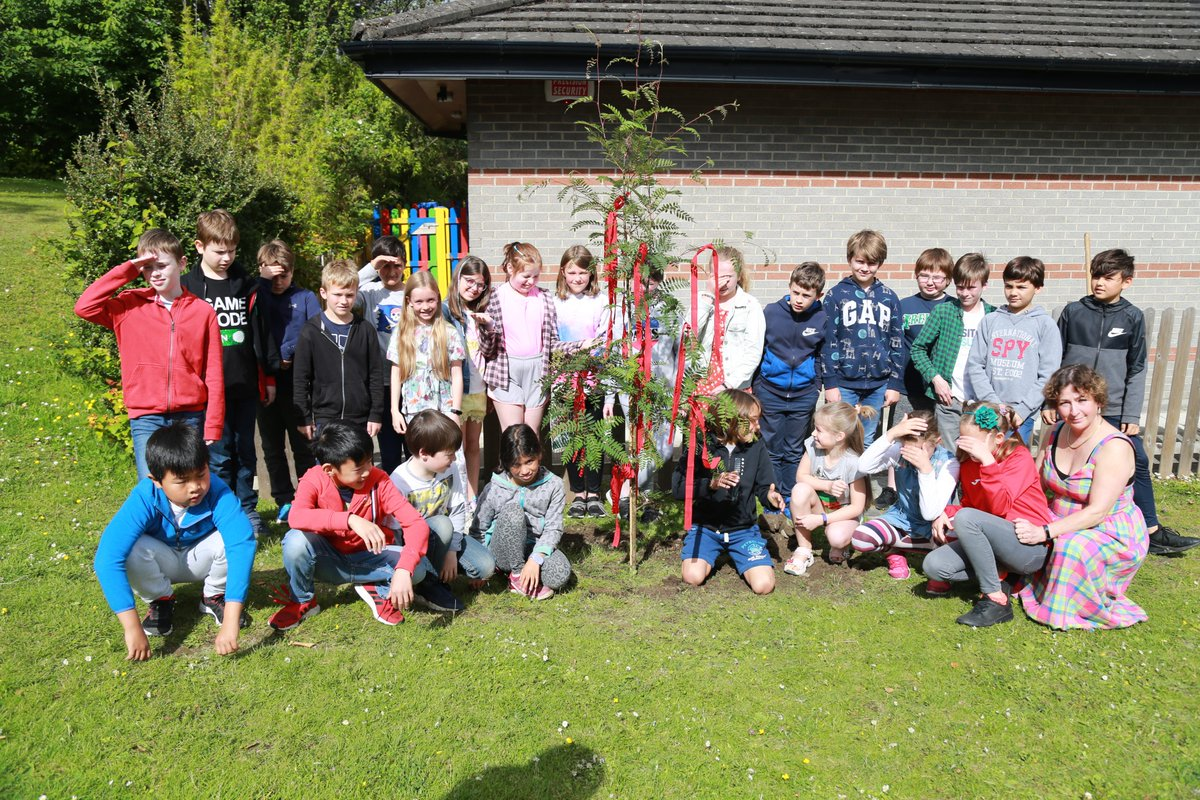 test Twitter Media - Frau Davitt and class 4B just planted the tree that Frau Davitt was given by the school community in a nice spot outside Shamrock House. The pupils are now in charge to look after it! https://t.co/00VnT1PiqZ