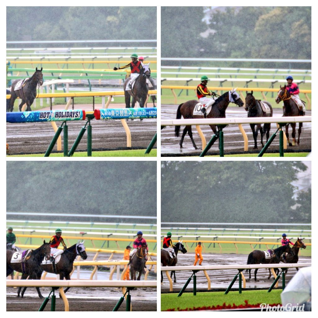 放馬しちゃった馬を熊沢騎手と西谷騎手が捕まえてくれたってツイートしたらいっぱい反応があった😃 他にも大野騎手と丸山騎手、横山典弘騎手と田中勝春騎手が捕まえてくれたのを見た事あります🎵皆さん本当に素敵ですよね❗ そして騎手の指示に従って仲間の為に待っててくれるお馬さん達も素晴らしい😆