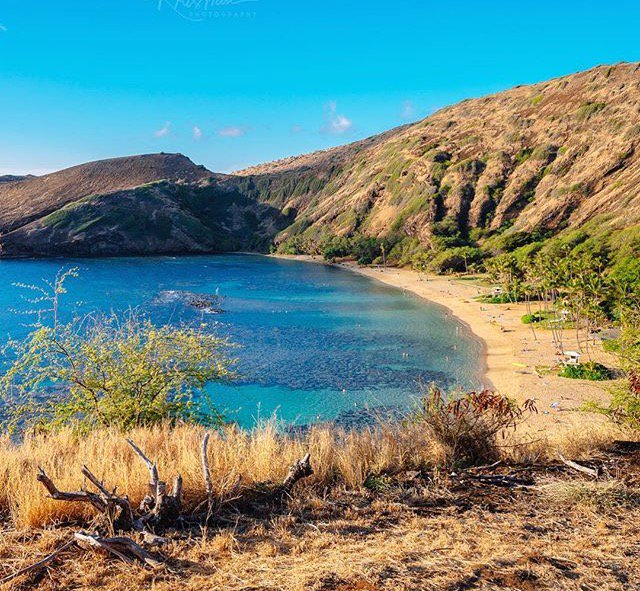 Hanauma Bay is one of the best places to snorkel on Oahu, but it has an incredible hike too! Check it out, the views are breath taking! #alohadiamondheadhike #hanaumabay #oahu #snorkel #hike  #nature #hawaii