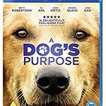 Image for the Tweet beginning: A DOGS PURPOSE Blu-Ray Film