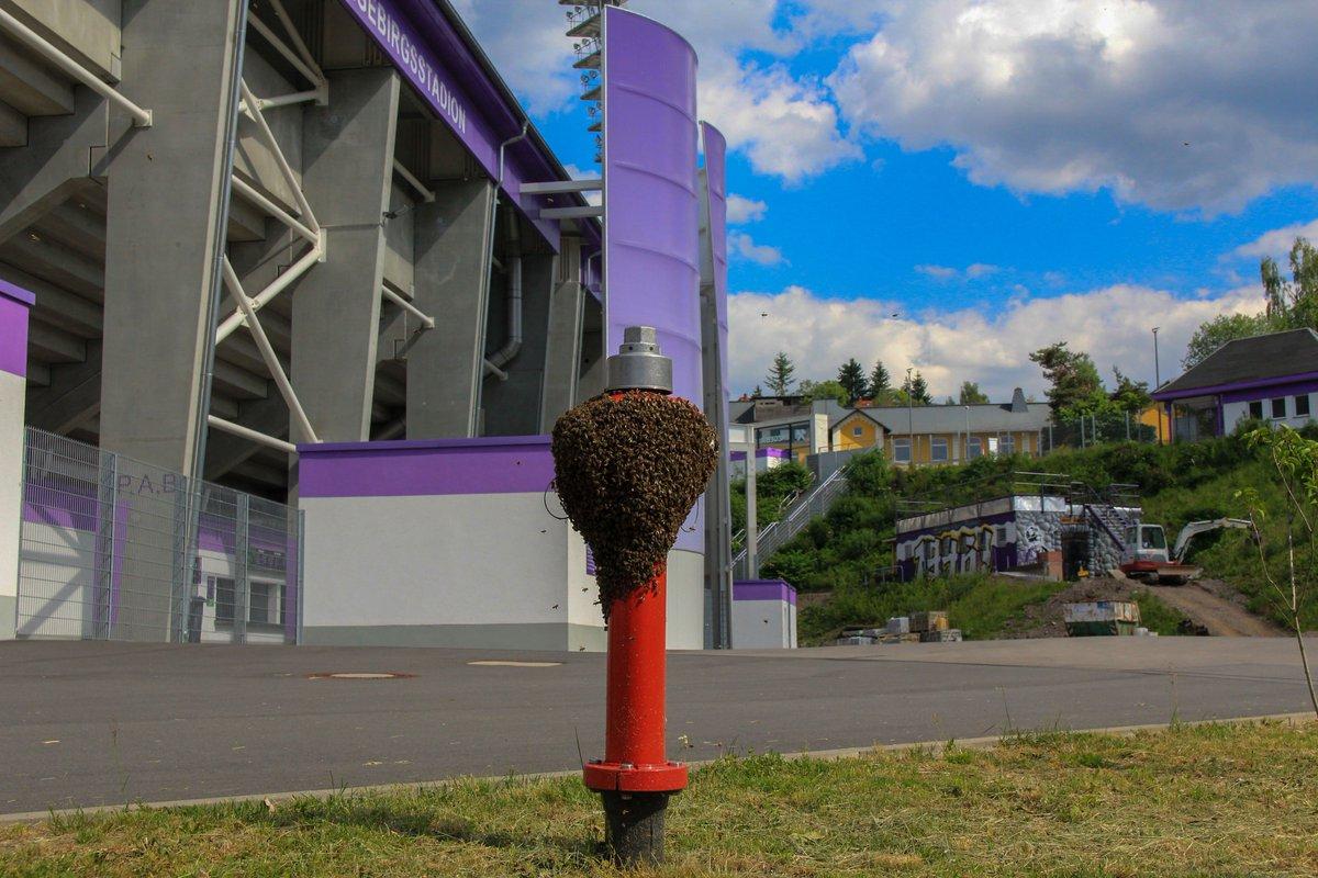 FC Erzgebirge Aue @FCErzgebirgeAue