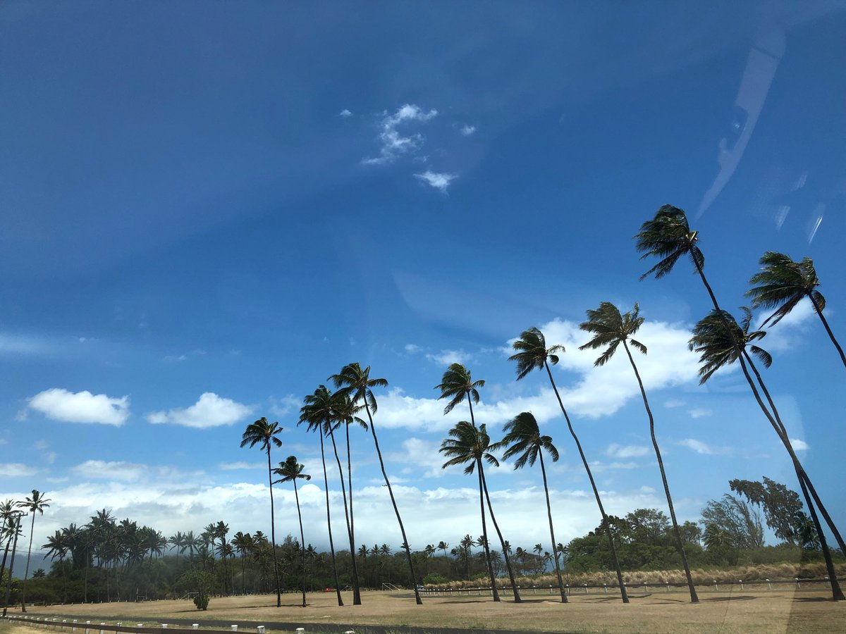 test Twitter Media - Hot and windy in Paia. #cmweather #Maui https://t.co/YRVvzYokab