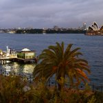 Image for the Tweet beginning: #Winter mornings in #Sydney  One of