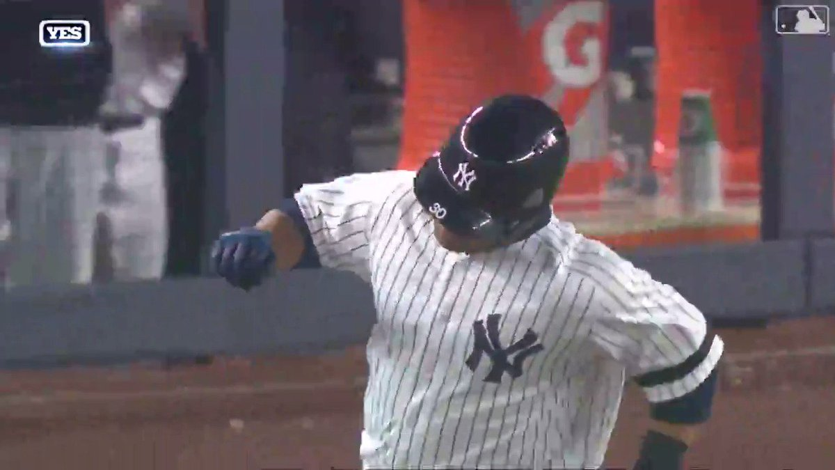 We have an #Edwing sighting in the Bronx.
