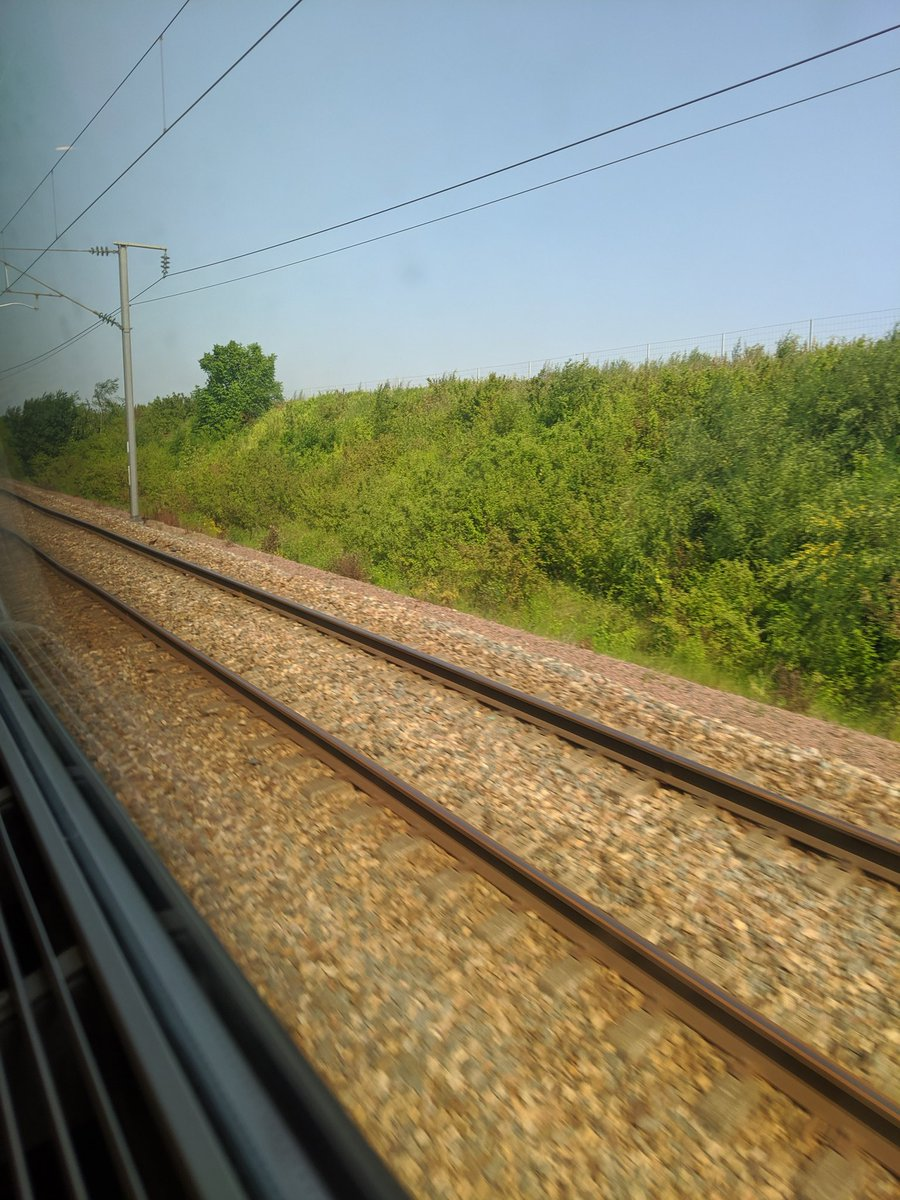 #ontheroad again ; more like the rails this time! Off to #Antwerp for a #fundraising #brainstorming workshop with @HeroRATs . If you want to help out you can #adopt a #rat 🐁 at APOPO.org 👍🙏 And big up to everyone who has already shown their support 👊
