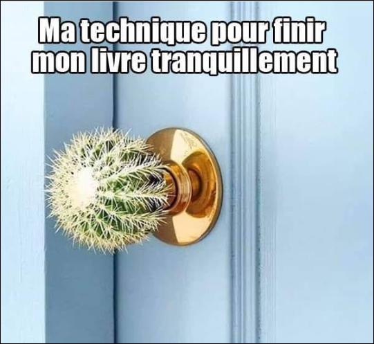 RT @LlinaresJosee: #lire #livre #libraries