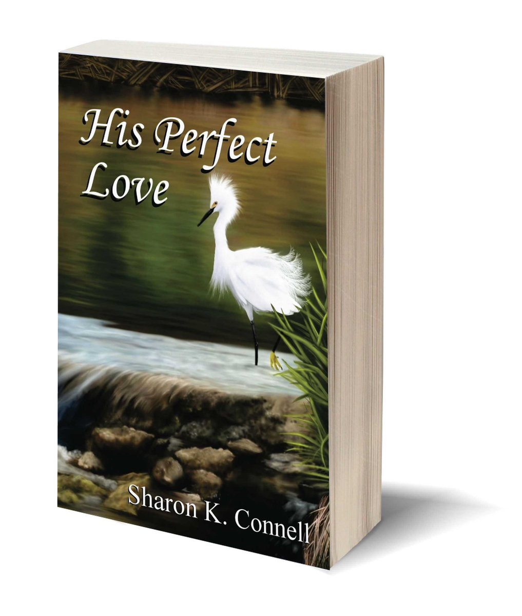 He'd do anything to see her dead, or worse! ★HIS PERFECT LOVE★ ✔http://amazon.com/gp/product/B01N9EZL59/ …   http://wp.me/P5rIsN-3Va  SharonKConnell #bookboost ASMSG ✎via Pizzazz Book Promotions http://wp.me/P5rIsN-Ft   #books