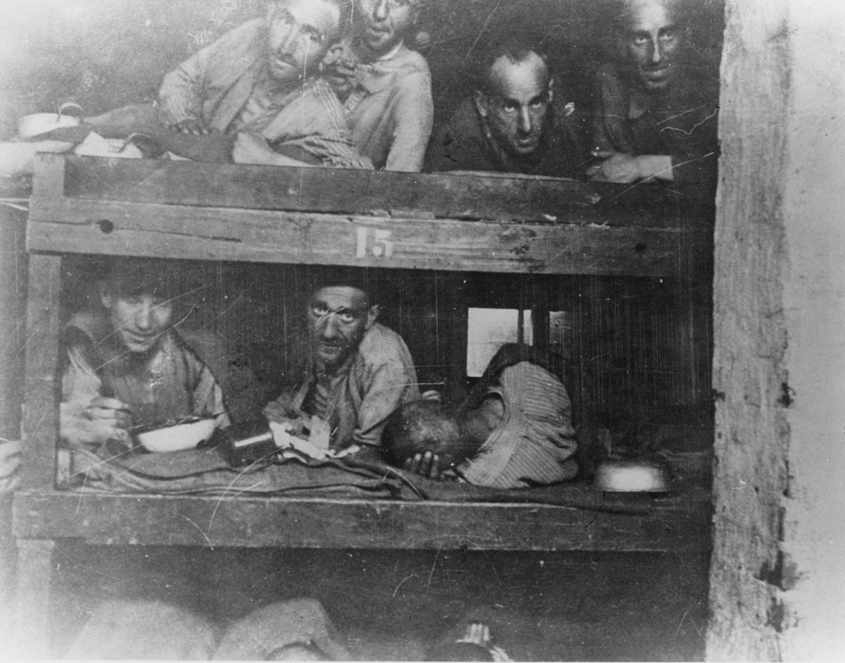 ".@AOC Concentration camps assured a slave labor supply to help in the Nazi war effort, even as the brutality of life inside the camps helped assure the ultimate goal of ""extermination through labor.""  Learn about concentration camps http://ow.ly/LtnX50uHJL2  #Holocaust #History"