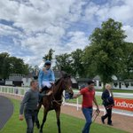 It's 2 wins from 2 runs for The @OTIRacing and @MprUpdates owned Southern Rock since joining us! @DavidNo45583497 took the ride today @HamiltonParkRC ..... congratulations to all connections....